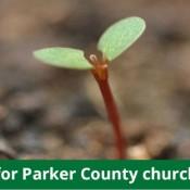 ECPC-churchplant