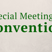 Special Mtg of Convention