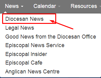 website-guide-news-diocesan-news